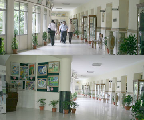 Delhi Public School Mathura Road Campus
