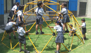 Lotus Valley International School Playarea